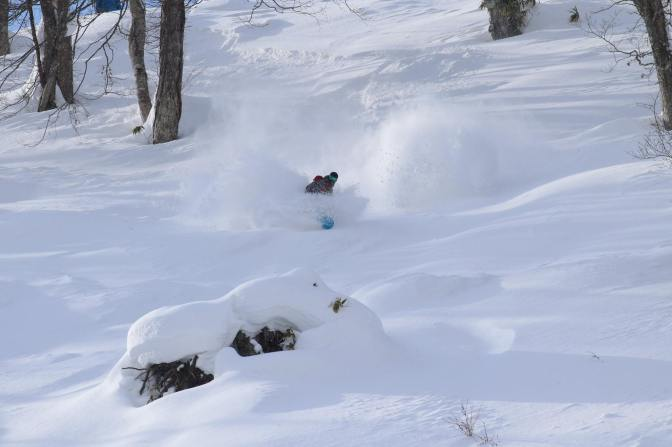 Review: Par's Powder Paradise – Japan