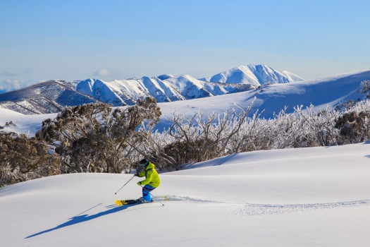 Feathertop skiing