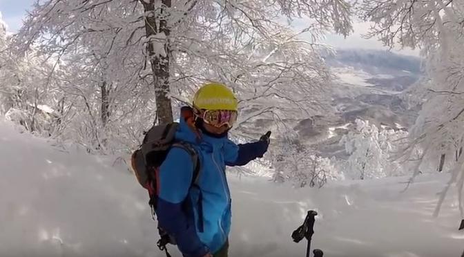 Madarao Kogen: An untapped Tree-Skiing Powder Paradise