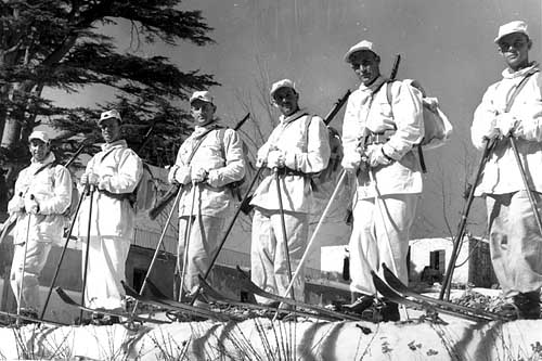 Did you know Aussie diggers could ski?