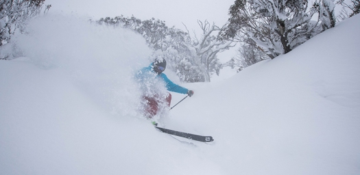 Pow-Day-Centre-Valley