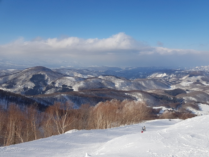 First time JaPOW: the only question is Hakuba or Madarao? Why not both?